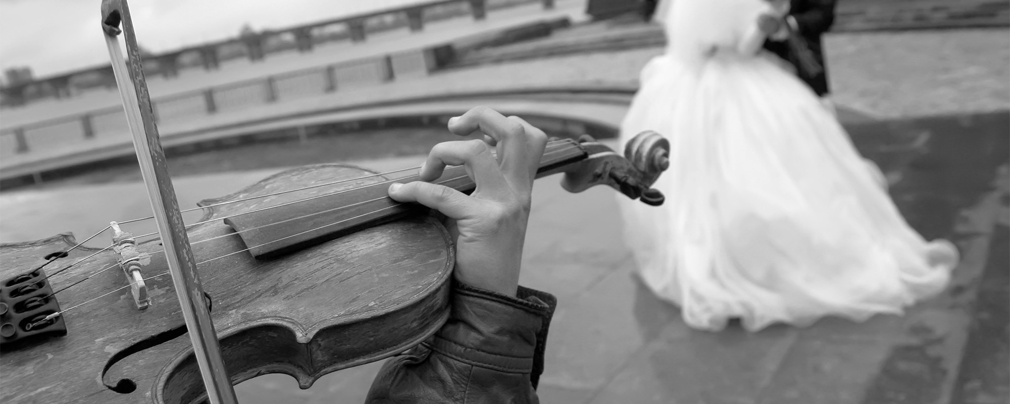 wedding violin - Live Music2